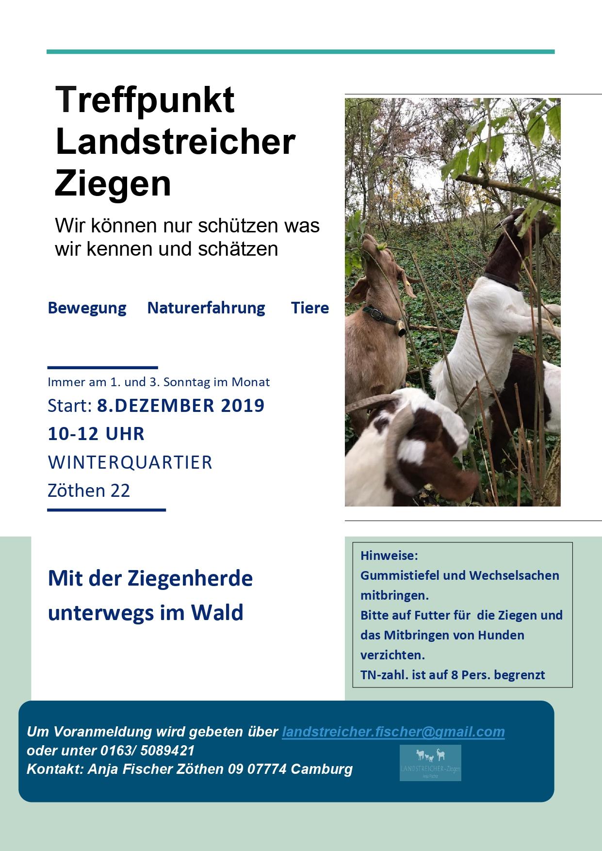 Wanderung mit Ziegen @ Start in Zöthen